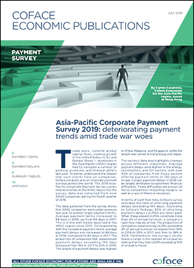 Asia-Pacific Corporate Payment Survey 2019